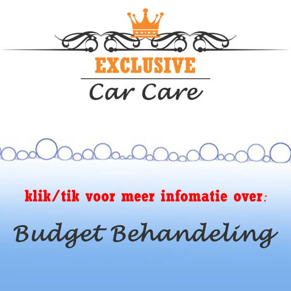 budget detailing behandeling meer info