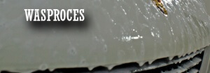 wasproces_banner